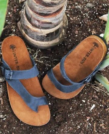 Inter-Bios 9511 flip-flops
