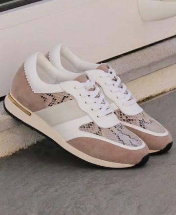 Catchalot Sneakers cordones Stephen Allen 10833-C11 taupe
